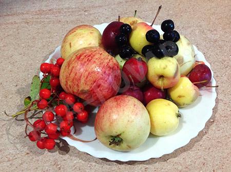 Компот из яблок и рябины